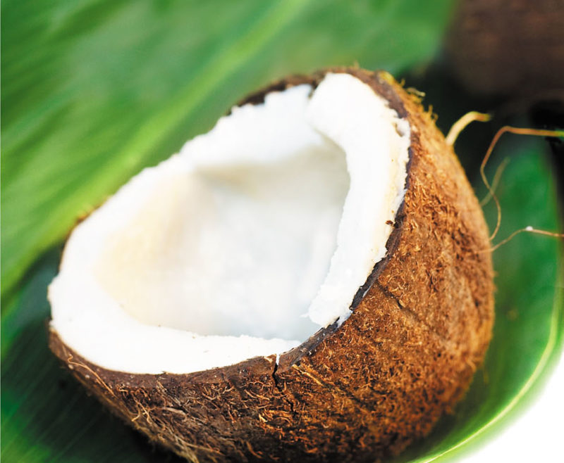 Coconut Oil: Can It Reduce The Appearance Of Scars?